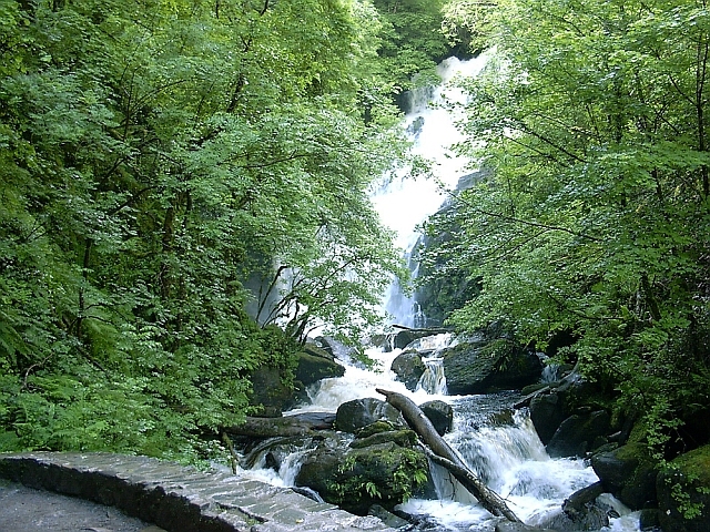 Torc Waterfall – Killarney National Park on rock of cashel map, kylemore abbey map, rio de janeiro map, ross castle map, tiwanaku map, trinity college map, ontario california map, ring of kerry map, tahiti climate map, stonehenge map, sligo map, croagh patrick map, colorado state parks map, the cliffs of moher map, town map, quebec provincial parks map, gap of dunloe map, galway map, ring of dingle map, ireland map,