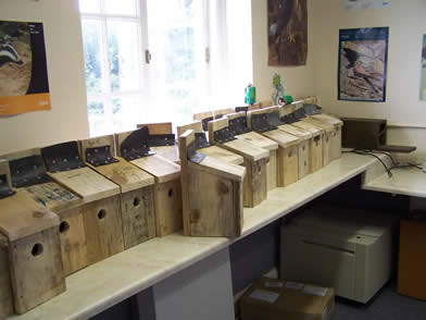 Bird boxes made from old pallets and tyre inner tubes