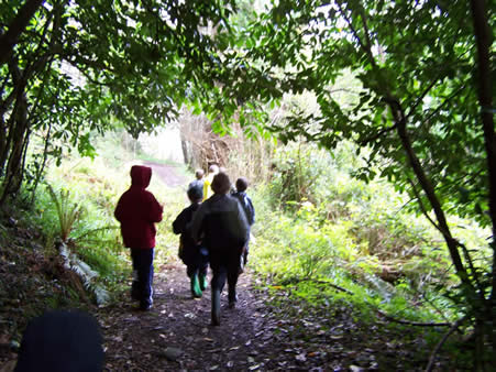 Children walking the Butterfly and Bumble Bee Transect