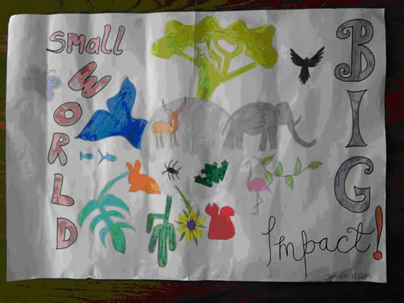 Winning Poster by Jamela Mirza, St columba's National School with facility for Deaf children, Douglas, Cork