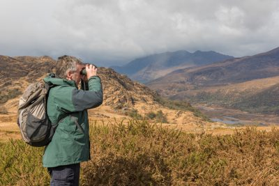 Deer Monitoring in the Uplands